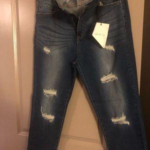 AP Blue Denim ( Fashion Nova ) - Size 3X